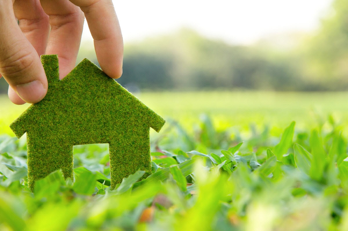 eco friendly home renovation tips