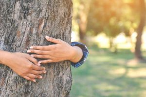 5 Ways Living an Eco-Friendly Life Can Benefit You